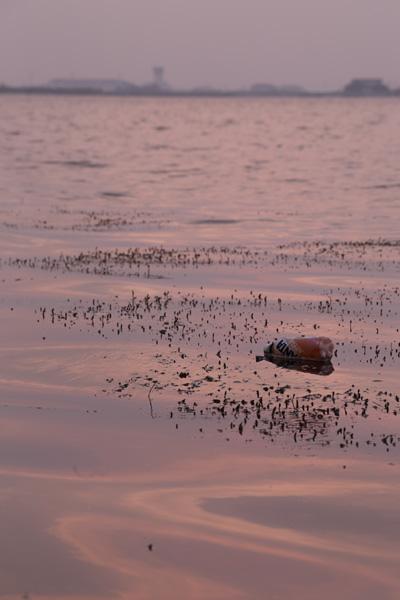 水面に浮かぶゴミ