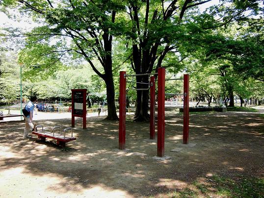 13.5.4与野公園ブログ用 (10)