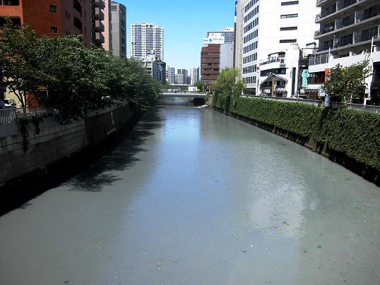 13.5.7ブログ用・五反田、秋葉原ヨドバシ、 (7)