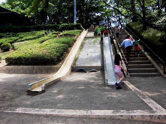 3 13.6.8丸山公園ブログ用 (4)