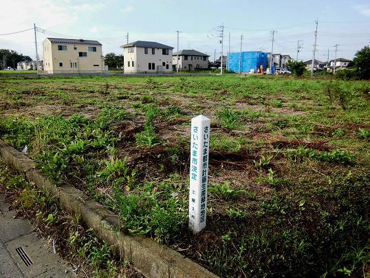 2 13.7.20ブログ用・朝散歩 (42)