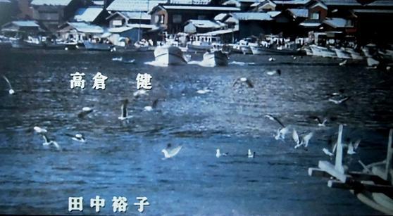 6 13.7.20ブログ用・朝散歩 (79)