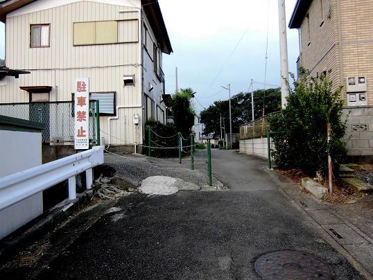 13.8.2朝散歩、三橋@プールブログ用」 (2)