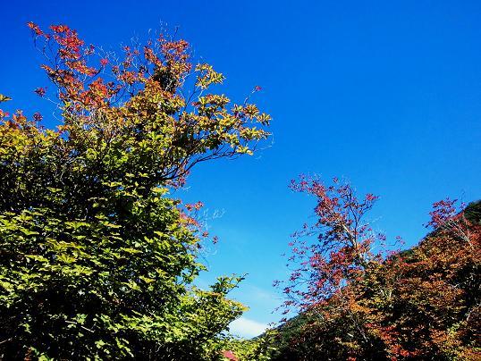 13.9.8-9中禅寺湖・迦葉山 (83)
