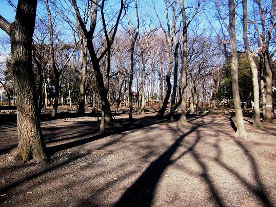 2 14.1.11孫公園・ブログ用 (4)