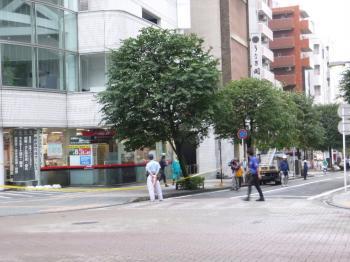 P1000463.jpg