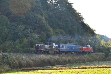 マヤ検測201312(11)