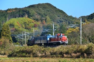 マヤ検測201312(13)