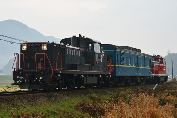 マヤ検測201312(33)