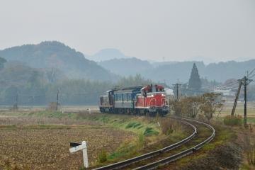 マヤ検測201312(34)