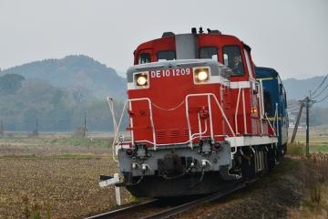 マヤ検測201312(36)