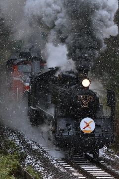 SLクリスマス号201312(4)