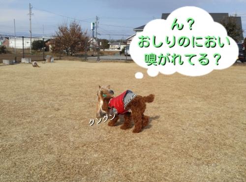 201401042028045d1.jpg