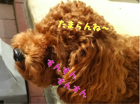Oh!Good!