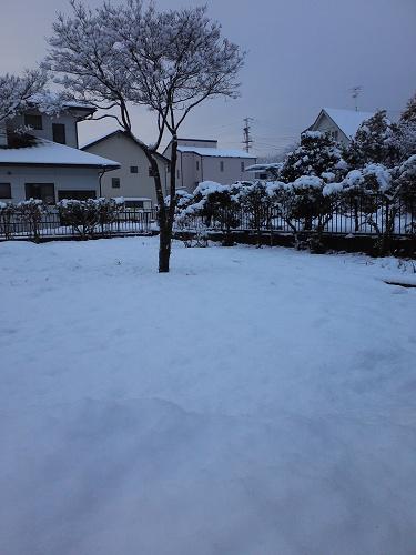 131219雪
