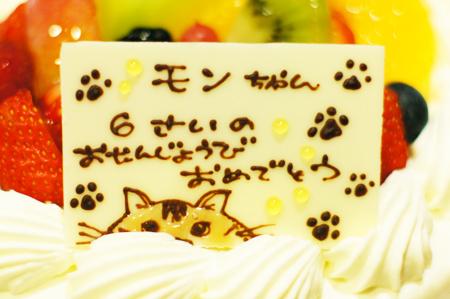 ラ・テールセゾン・バースデーケーキのソマリ猫プレート