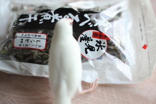 daikoubutu 2