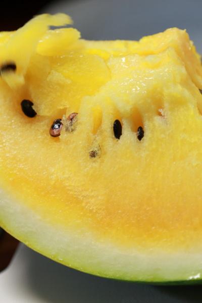 summer orange suika (1)
