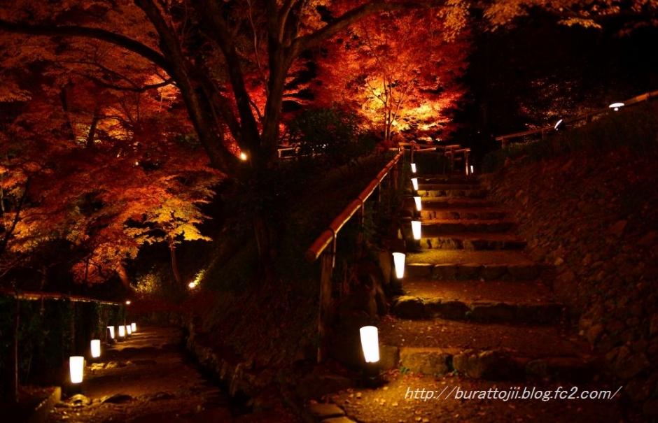 12.2013.12.03北野天満宮ライトアップ