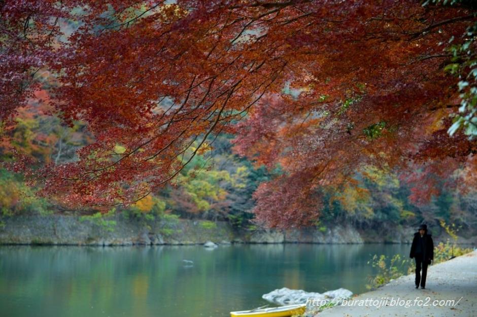 11.2013.12.04嵐山