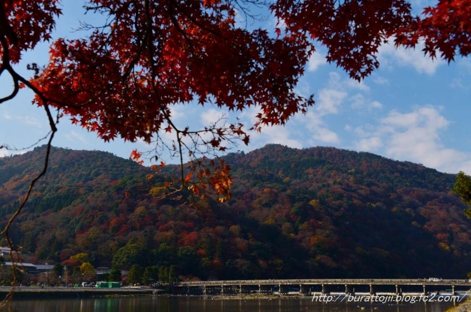 2.2013.12.04嵐山