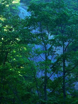 白糸の滝@安_その2