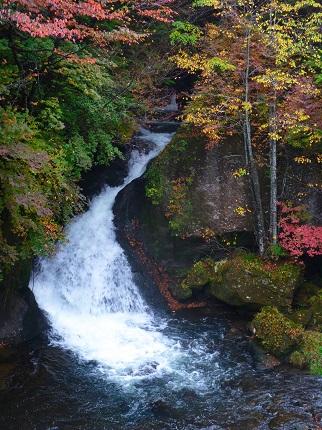 竜頭の滝・右岸