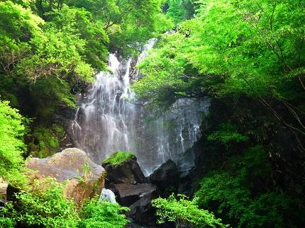 飛竜の滝_その1