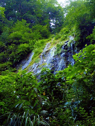 絹糸の滝(尾瀬)_その1