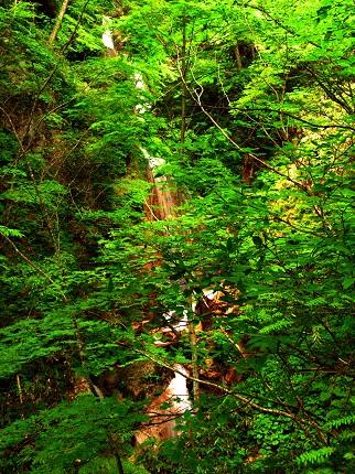 三段の滝_その2