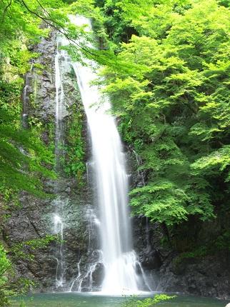 箕面の滝_その1