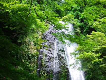 箕面の滝_その2