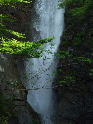 洒水の滝_その1