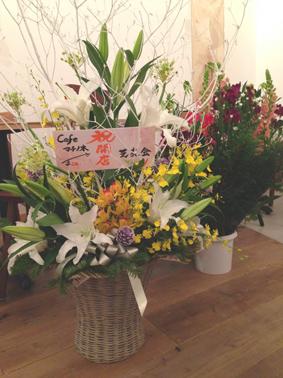 shibayukai.jpg