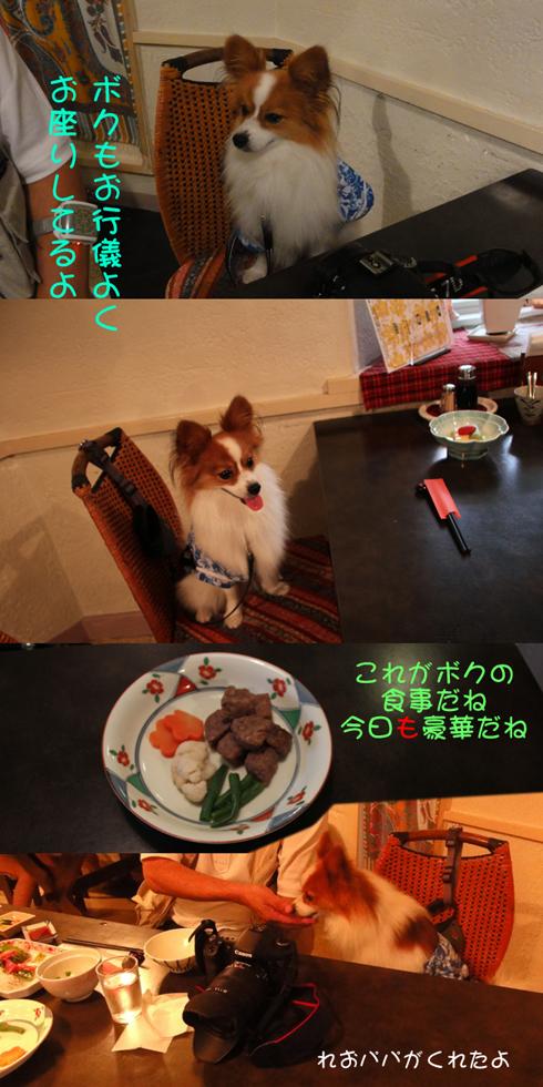 ボクの夕食も豪華でしょ~~♪