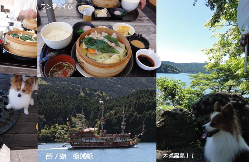 ランチは芦ノ湖で