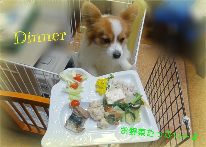 白菜&人参&椎茸&豆腐の煮物
