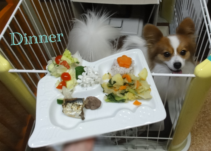 じゃが芋と人参とキャベツと小松菜の煮物