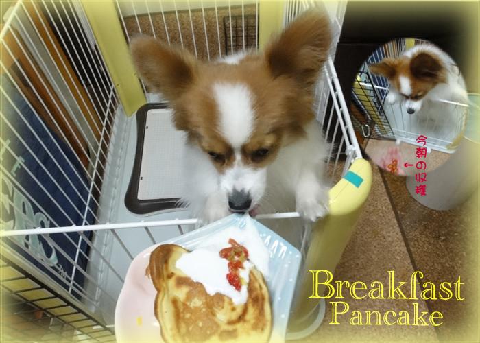 Pancake & Cherry & Yogurt