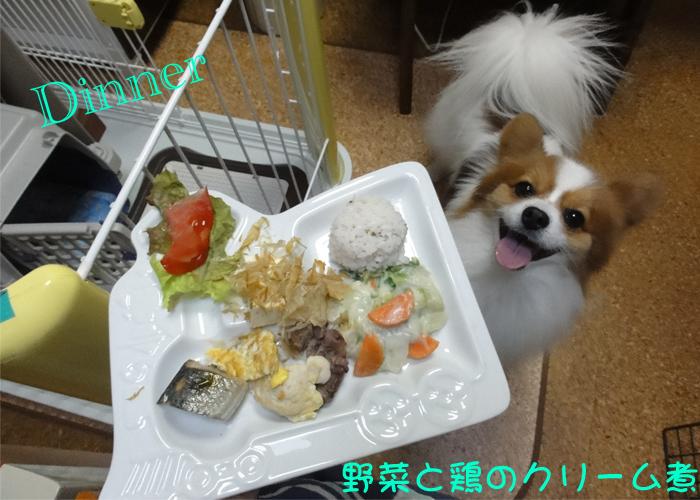 野菜と鶏肉のクリーム煮