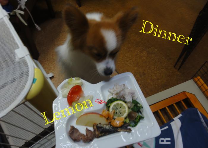 白菜と茸ともやしの煮物on檸檬