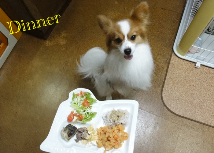 雑穀飯 on White sesame