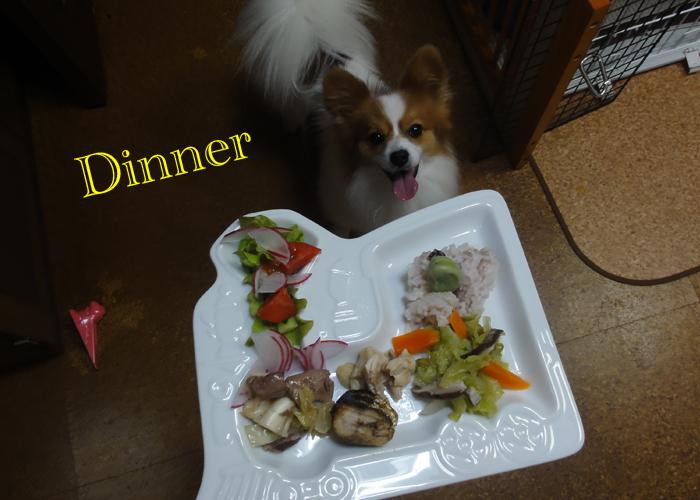 白菜と人参と椎茸の鶏モモ肉の煮物