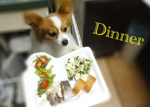 ふだん草&キャベツ&キノコ&豆腐の煮物