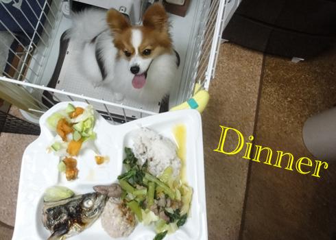 砂肝と野菜(小松菜&キャベツ&オロシ人参)の煮物