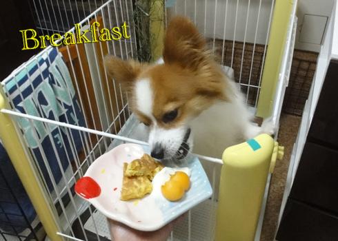 麩入りパンケーキ