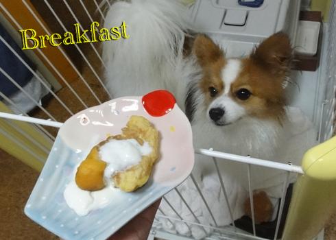 麩入パンケーキ