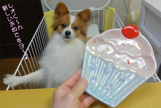 新しいお皿かな?・・・・ケーキだよね?
