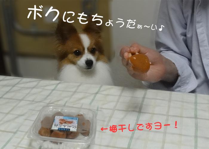 梅干し食べたぁ~い!