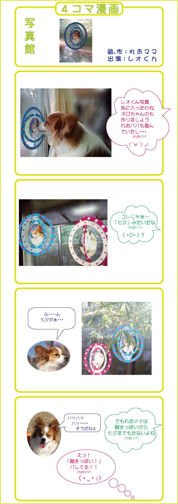 七夕・・・・・・レオくんの4コマ漫画集